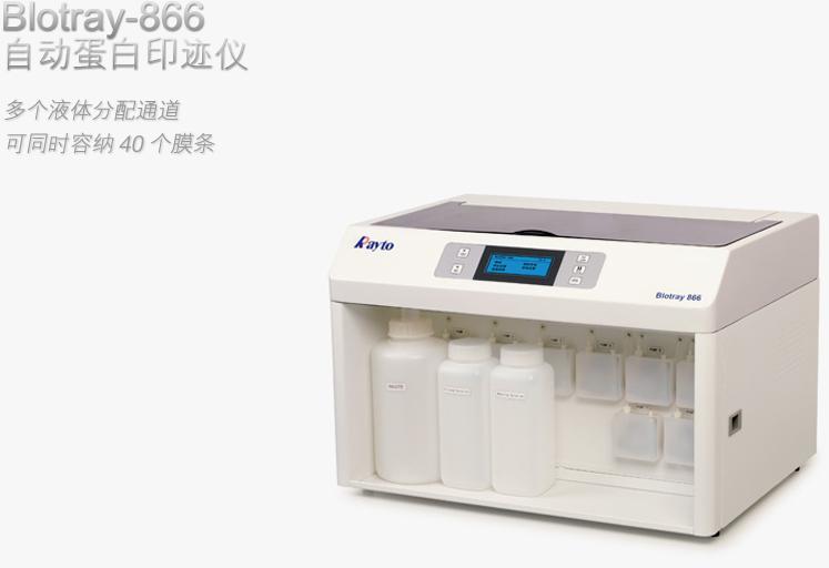 Blotray866自动蛋白印迹仪